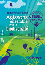 trame-vert-et-bleue-logo